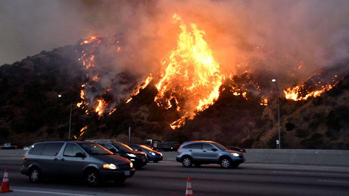 加州野火蔓延,前州长施瓦辛格、球星詹姆斯逃离家园