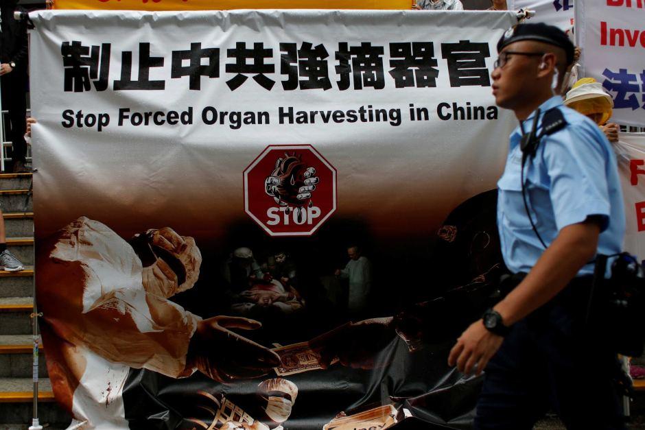 """悉尼先驱晨报:""""反人类罪"""": 中共在杀害良心犯以谋取器官吗?"""
