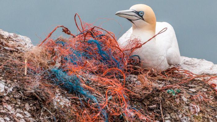 台湾向塑料垃圾宣战