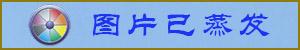 """中南海版的""""红衣女""""和山寨版的王沪宁"""