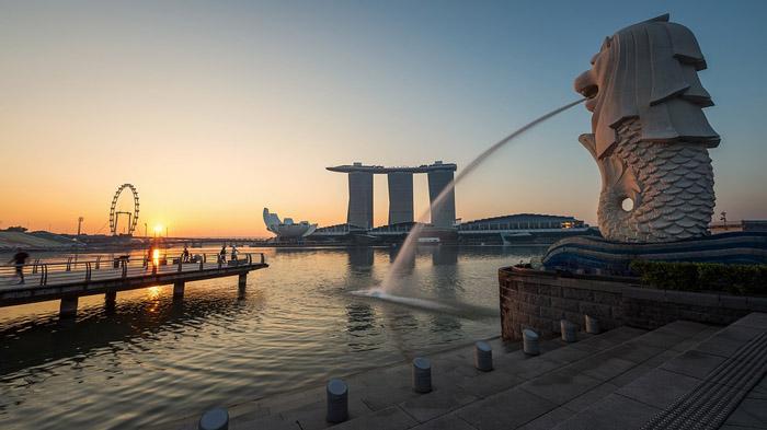 新加坡赢了你什么