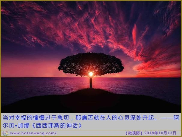 〖微视野〗当对幸福的憧憬过于急切