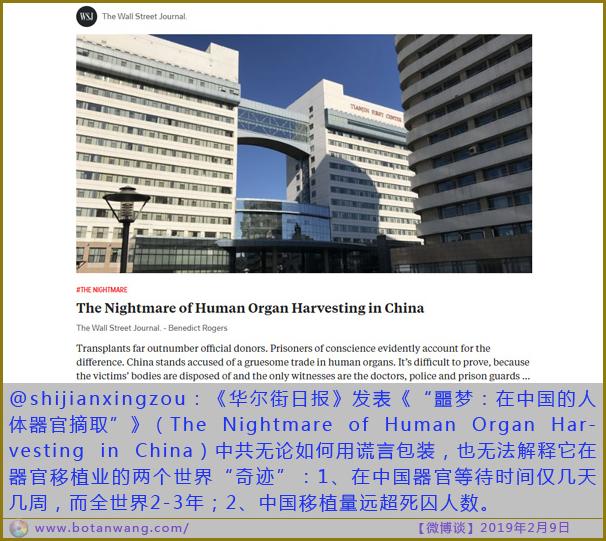 〖微博谈〗噩梦:在中国的人体器官摘取